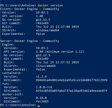 Running a docker command in the Powershell
