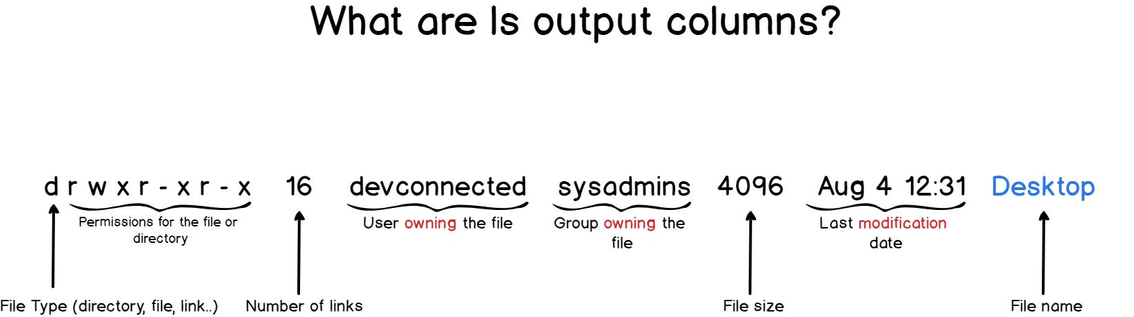 Ls command output columns