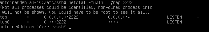 Checking SSH port on Linux using netstat