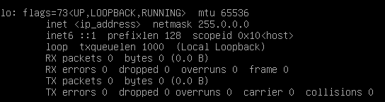 Checking local IP using ifconfig