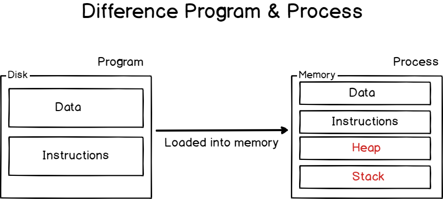 Difference program and process on Linux