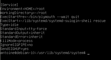 Single user mode service file on Debian