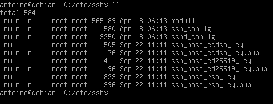 Listing SSH configuration files in etc