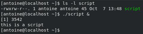 Script on Linux