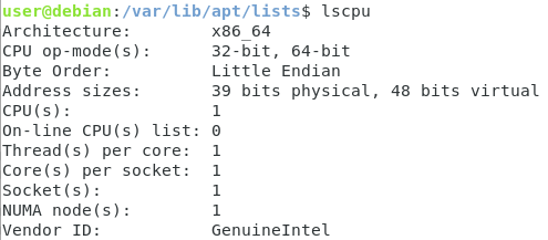 Listing CPU information with lscpu