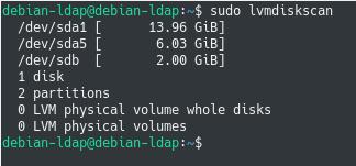 lvmdiskscan command on linux