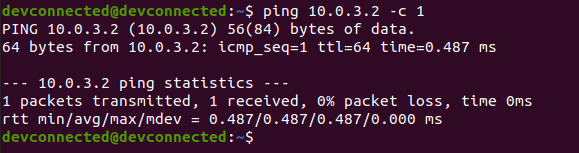 ping command successful